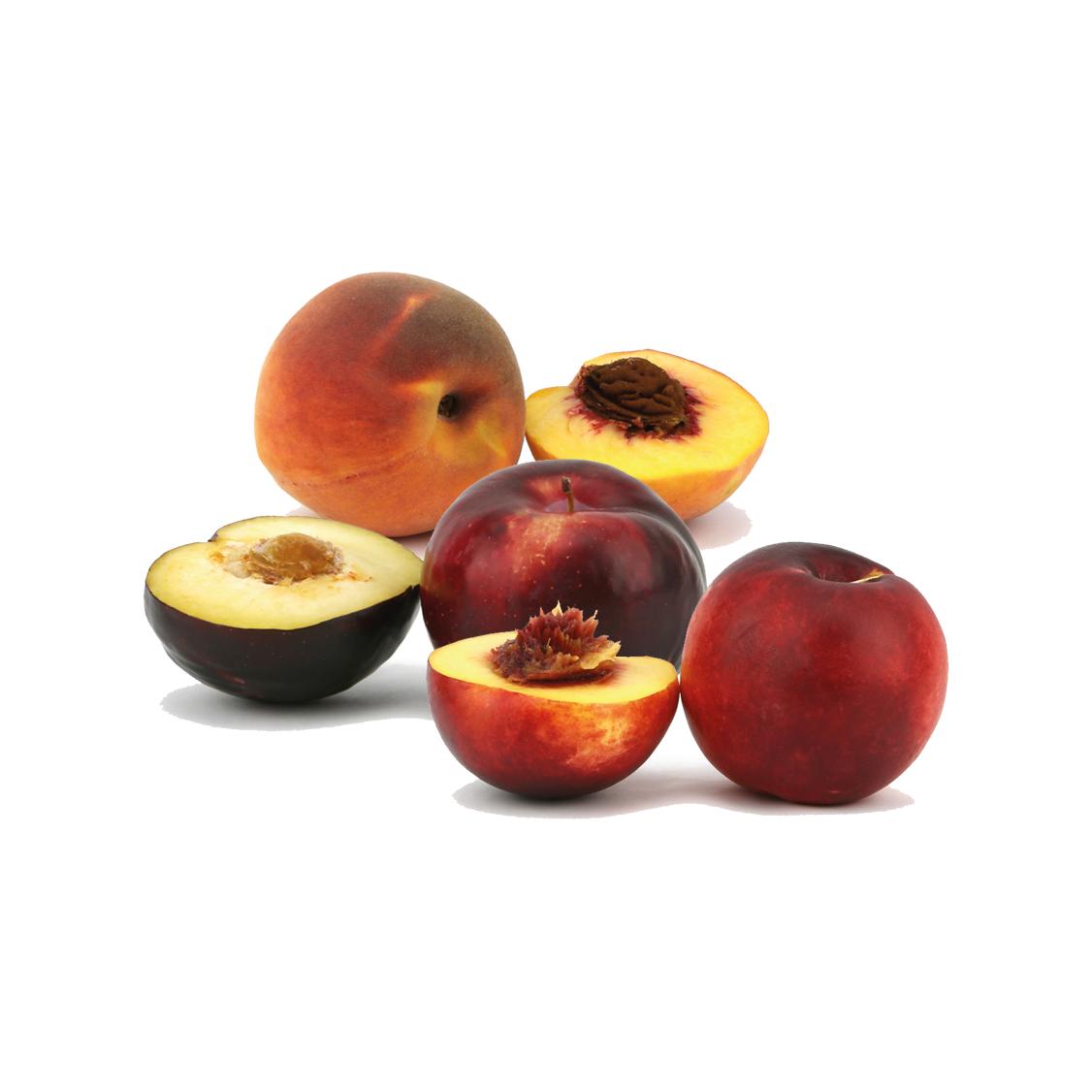 Pêssego, Ameixa e Nectarina